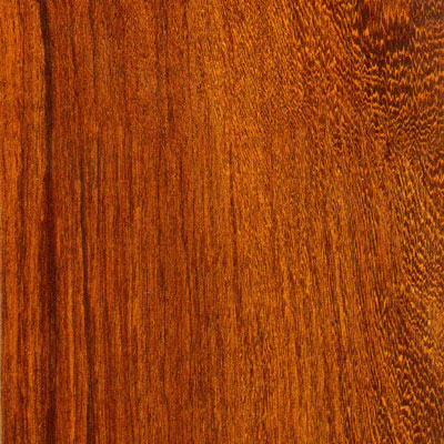 Lamett Long Plank Belize 8mm Piano Finish Laminate Flooring